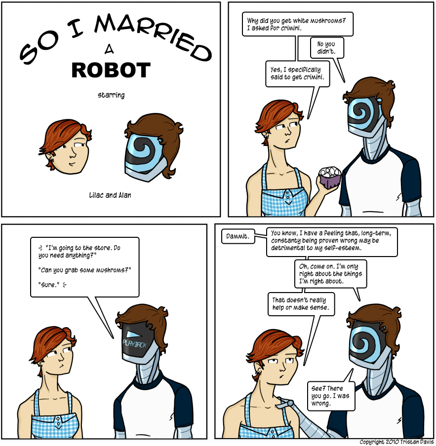 so i married a robot